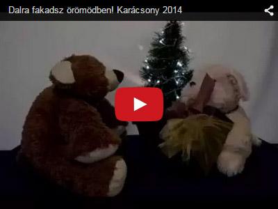 Nortyx Karácsonyi videó 2014