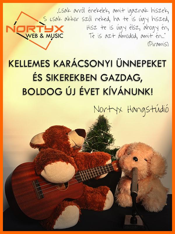 Kellemes Karácsonyi Ünnepeket kíván a Nortyx Hangstúdió!
